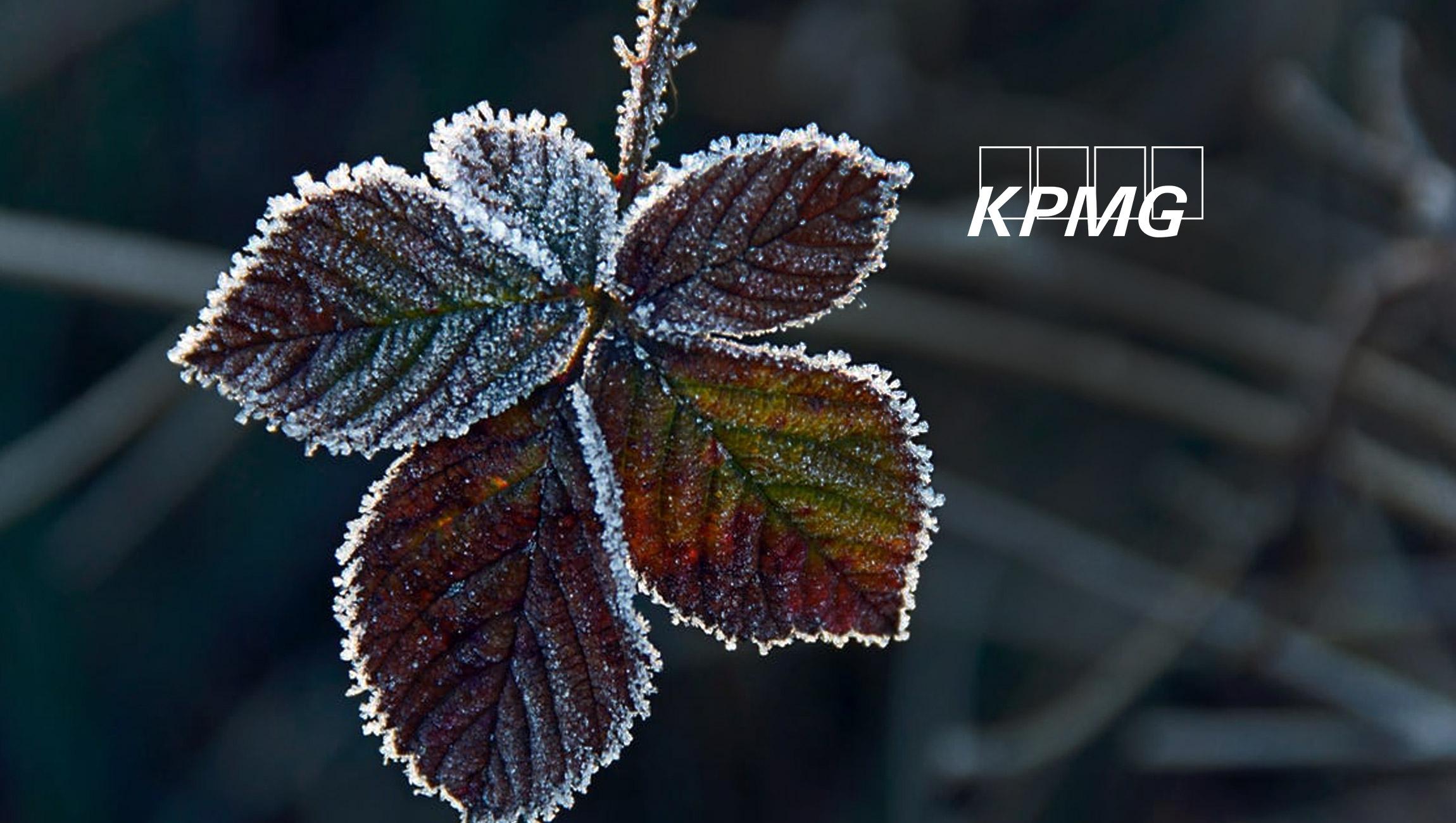 KPMG Announces New Integration With Google Cloud Contact Center